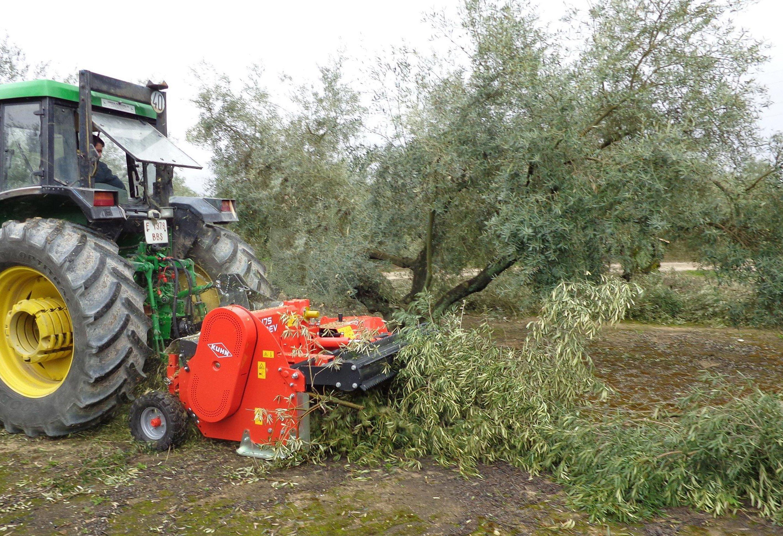 New orchard shredder makes light work of tree prunings