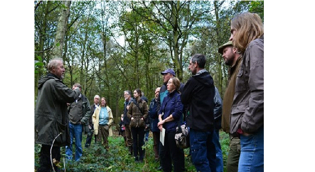 Landowners in Doncaster urged to restore ancient woodland