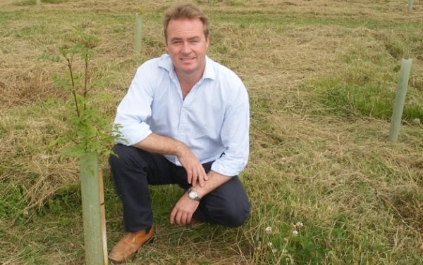 Tree suppliers have secured a royal contract