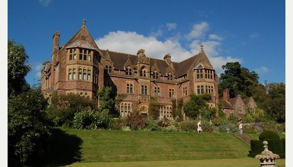 National Trust reveals tree replanting programme