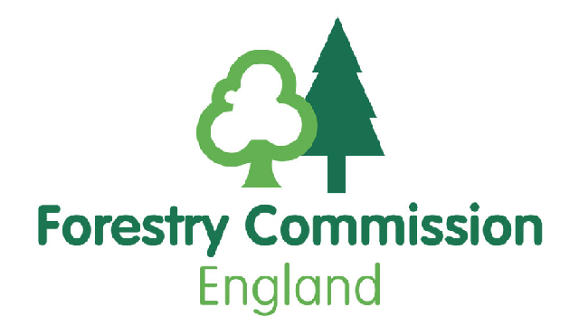 Forestry Commission publish new research exploring links between woodland age and biodiversity