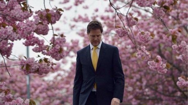 Nick Clegg brands tree-felling 'national scandal'