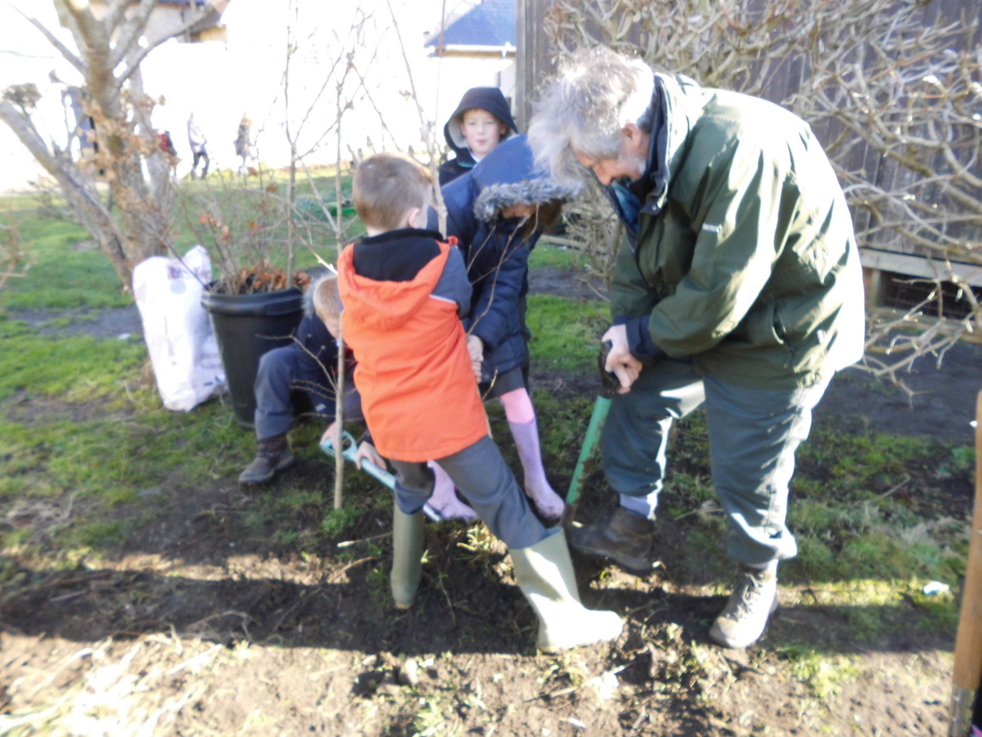 Dorset school pupils replant trees at new site
