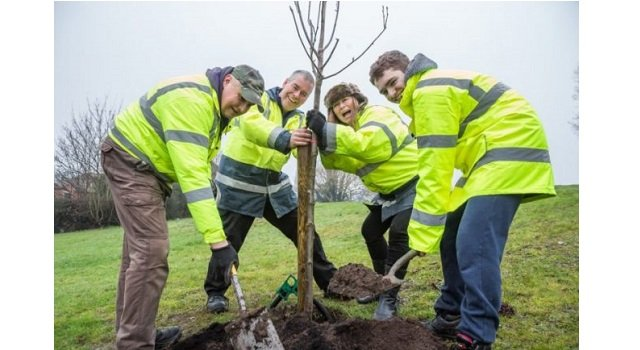 Bus firm First donate 1,600 trees to be planted in Worcester