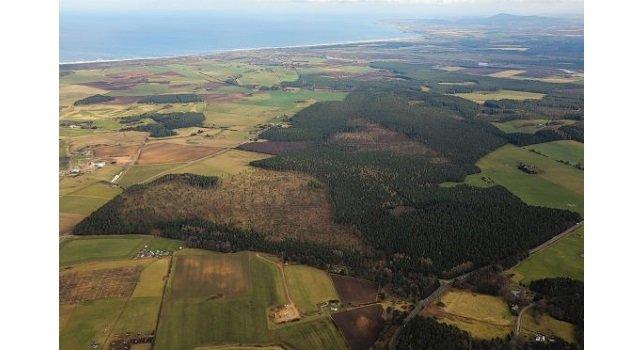 Nearly 4,000 acres of Scottish woodland put on the market for £11million