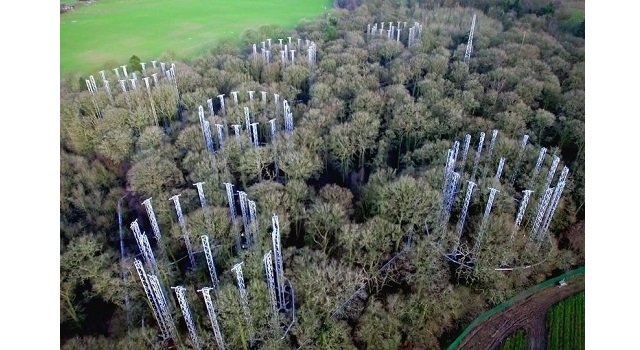 Birmingham Institute of Forest Research wins West Midlands project of the year