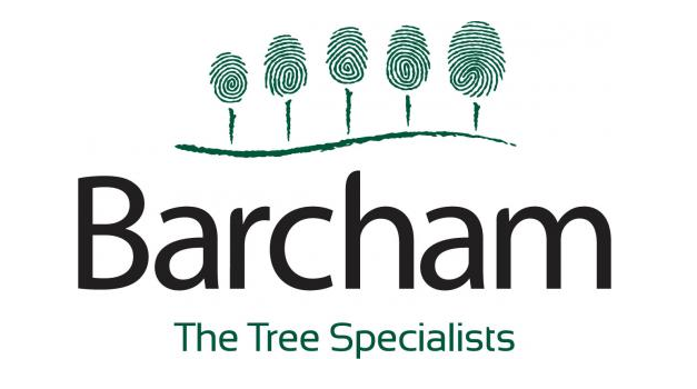 Barcham supplies flowering cherries for Cobham's new Remembrance Avenue