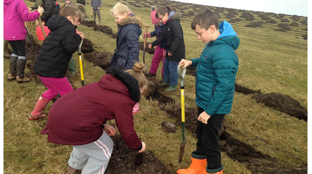 Planting the Future: children help create England's largest forest in 30 years