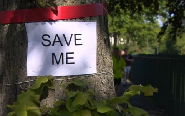 Sheffield trees: Protest policing defended after 'escalation'