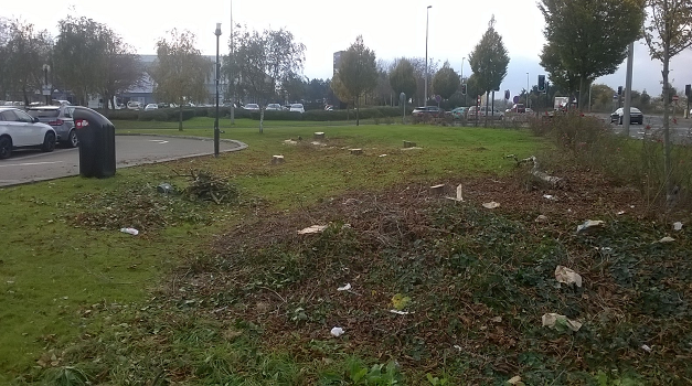 The Parks Trust secures compensation for unlawful felling of trees