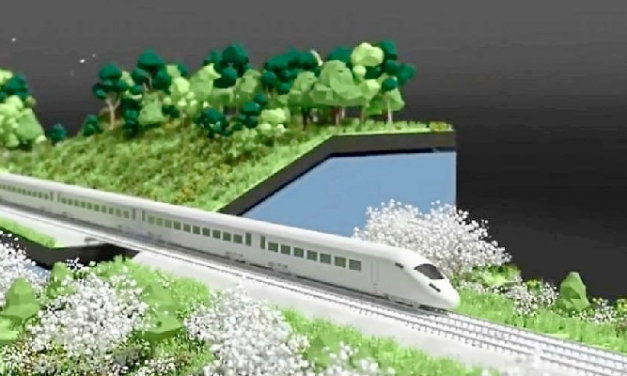 HS2 'green corridor' plans slammed by campaigners