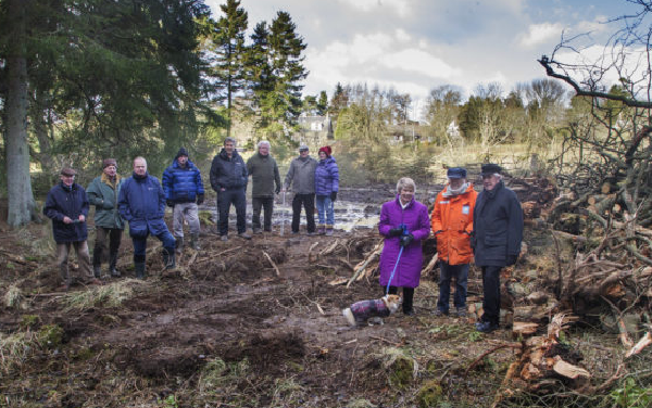 Counter claims made by site owner as Monikie tree felling enforcement saga continues