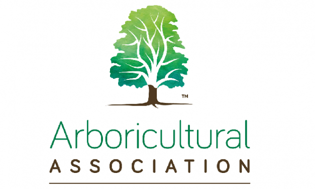 The Arboricultural Association gives its verdict on the NPPF