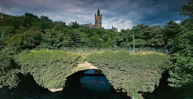 Trees are saving the life of Glasgow