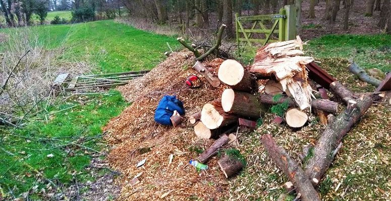 Tree surgeon fined £3,000 for dumping waste wood near major road