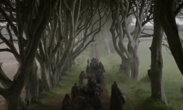 Game of Thrones: Gale winds destroy trees made famous by HBO show