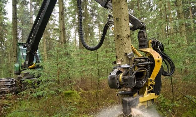 Report heralds major changes to NRW timber ops