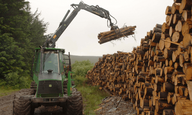 New era dawning for forest operations in Wales