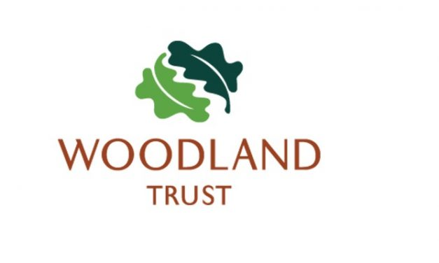 Tree cover target is achievable says Woodland Trust