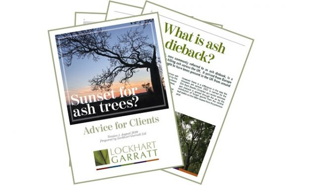 Free resource offers support in dealing with ash dieback