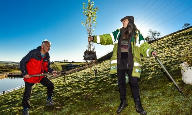 English water companies commit to planting 11 million new trees by 2030
