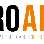 Pro Arb timeline