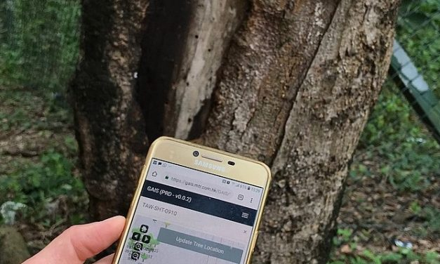 MTR's New Technology Enhances Tree Management