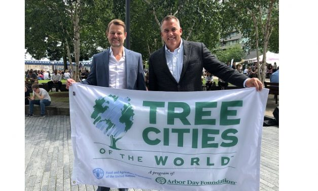 Tree Cities of the World programme unveiled