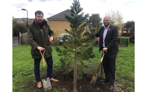 5,000 new street trees to be planted in Hackney