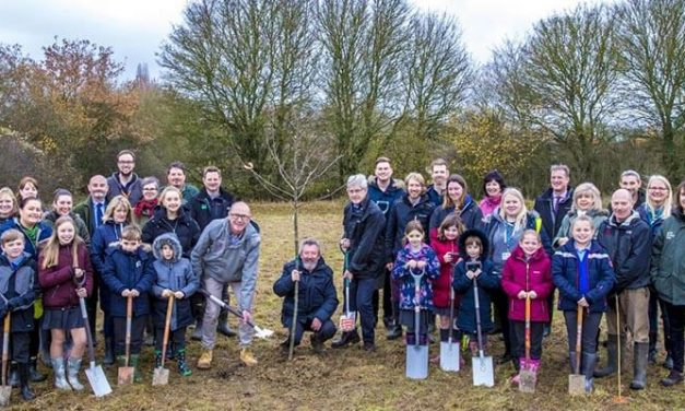 First of 375k trees planted to launch Essex Forest bid