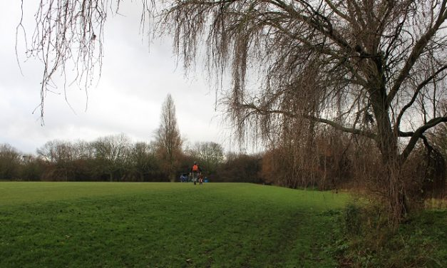 New 6,500-tree edible forest to be planted in Hackney Marshes