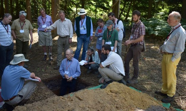 New partnerships boost Royal Forestry Society one-day courses