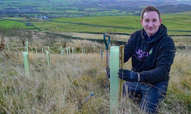 United Gas & Power pledge to plant a tree for every new customer