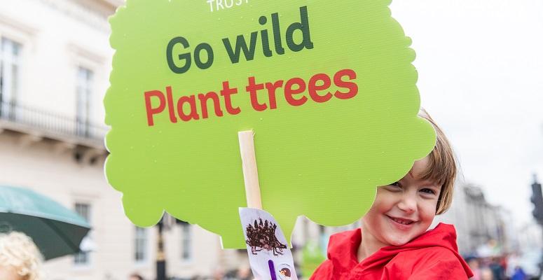50 MILLION TREES