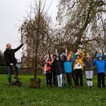 Greenwich reach tree planting target early