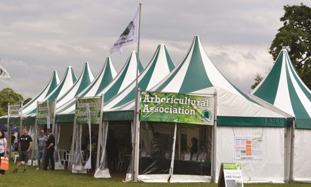 ARB Show returns virtually for 2021