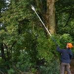 Stihl launches updated pole pruner range