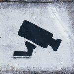 Thieves target arborist kit and vehicles