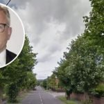 lack of street trees in Andover is 'tragic' in light of climate emergency