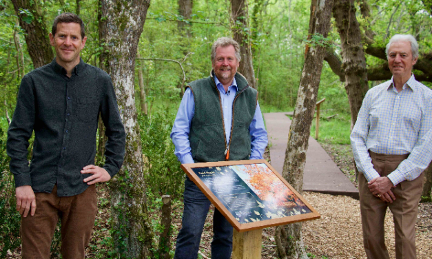 Branching out – Exbury Gardens officially opens its new woodland trail