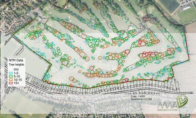 Arboriculture experts use National Tree Map to assess tree condition